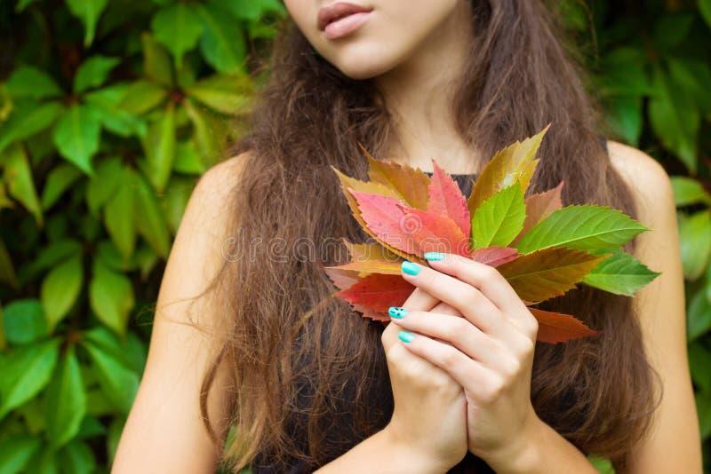 Πεσμένα φύλλα φθινοπώρου στα χέρια ενός όμορφου κοριτσιού με τα πλήρη χείλια στοκ φωτογραφίες