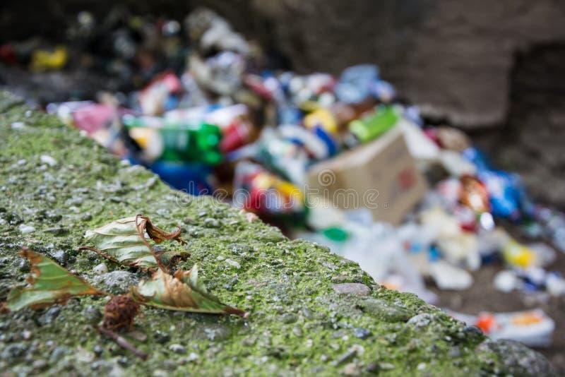 Πεσμένο ξηρό φύλλο και μια δέσμη των απορριμάτων στο υπόβαθρο στοκ εικόνες