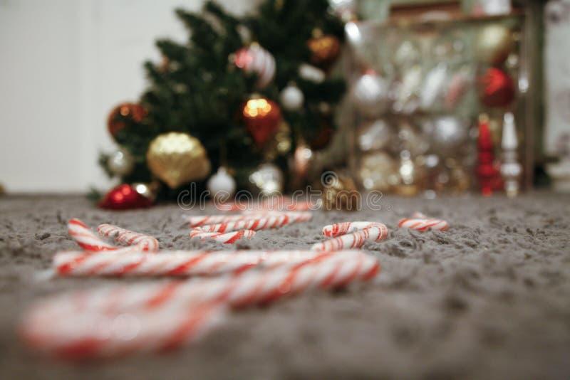 Πεσμένο χριστουγεννιάτικο δέντρο και μια διάβαση των καλάμων καραμελών στοκ εικόνες με δικαίωμα ελεύθερης χρήσης