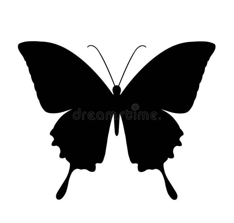 Πεταλούδα, μαύρες σκιαγραφίες στο λευκό διανυσματική απεικόνιση