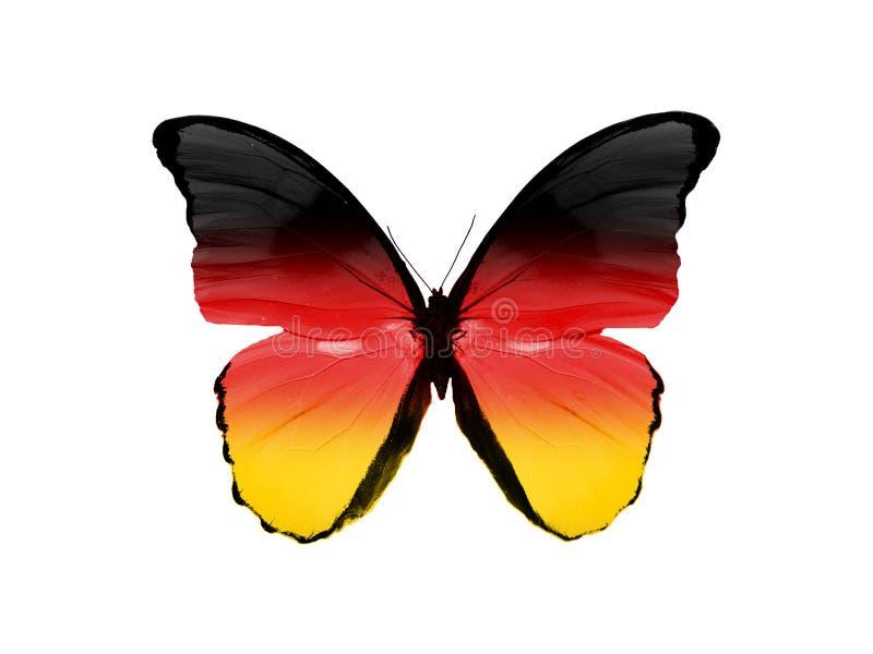 Πεταλούδα με τη σημαία της Γερμανίας στα φτερά που απομονώνονται στο άσπρο υπόβαθρο έναστρη ριγωτή σημαία στοκ φωτογραφία με δικαίωμα ελεύθερης χρήσης