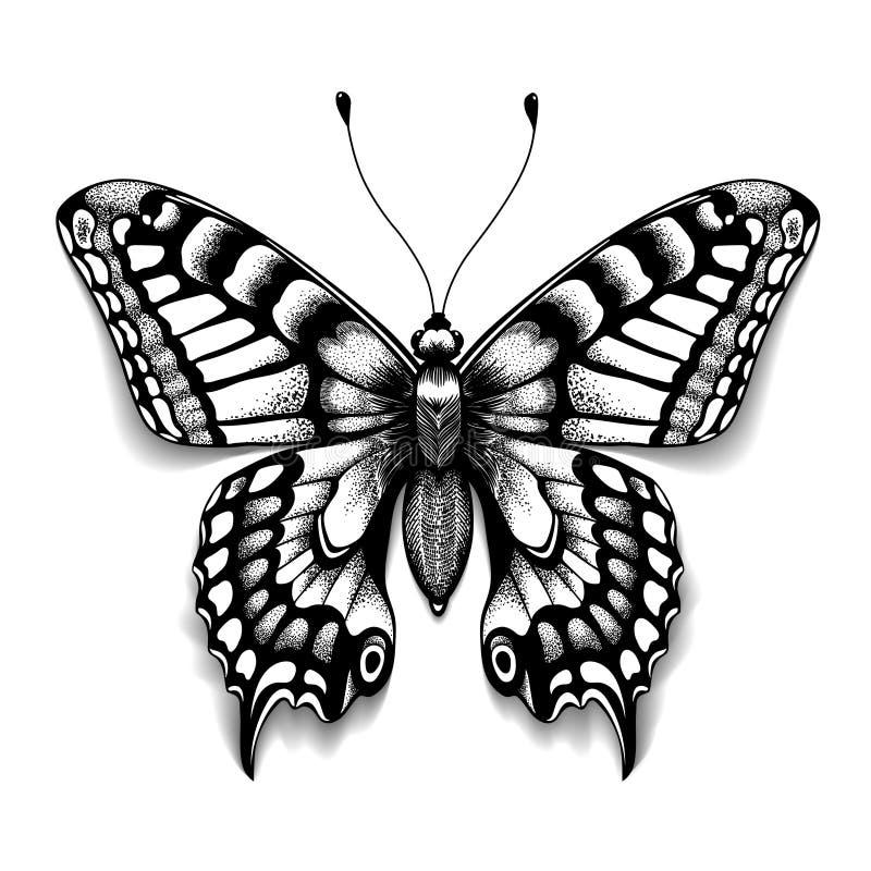 Πεταλούδα τέχνης δερματοστιξιών για το σχέδιο και τη διακόσμηση Ρεαλιστική πεταλούδα με τη σκιά Διανυσματικό σκίτσο της πεταλούδα διανυσματική απεικόνιση