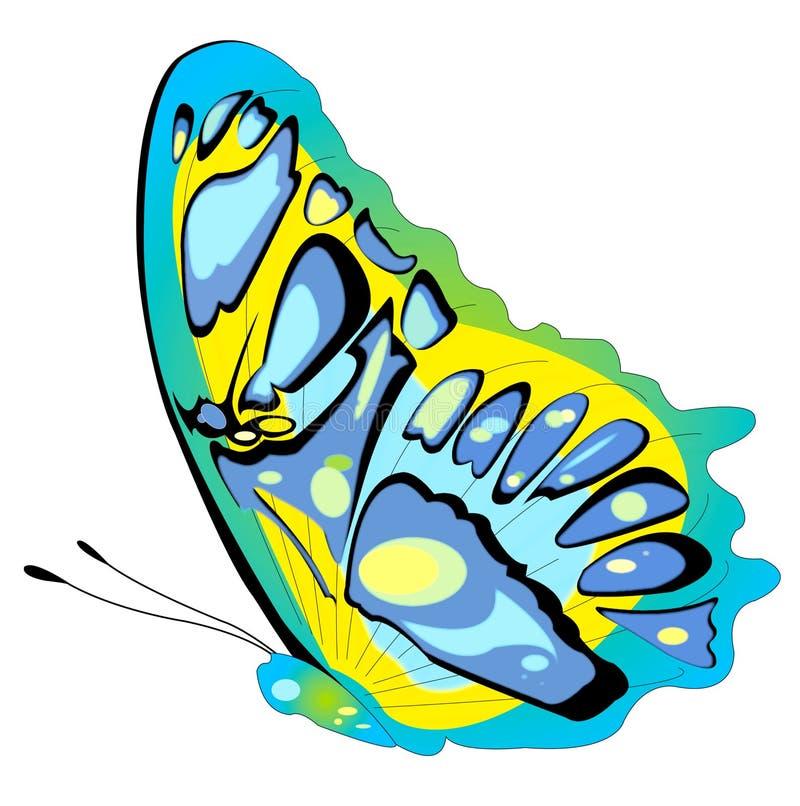 πεταλούδα διανυσματική απεικόνιση