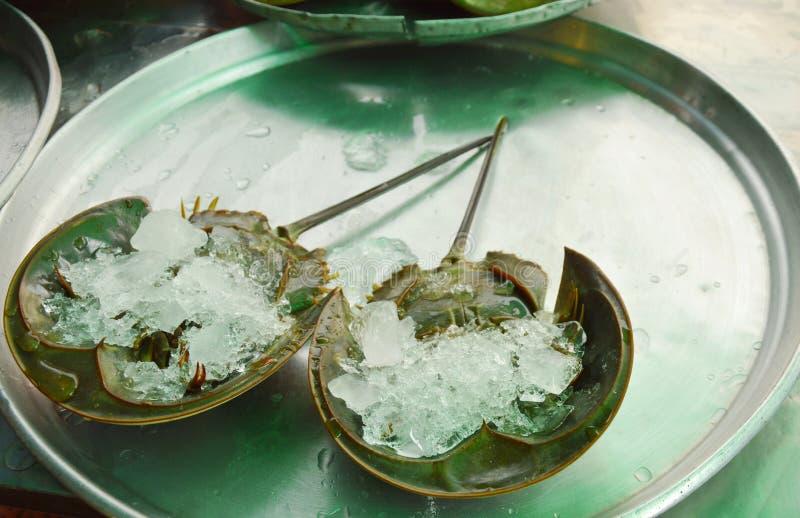 Πεταλοειδές καβούρι θάλασσας που συντηρείται από τον πάγο για την πώληση στην παραδοσιακή αγορά της Ταϊλάνδης στοκ εικόνα