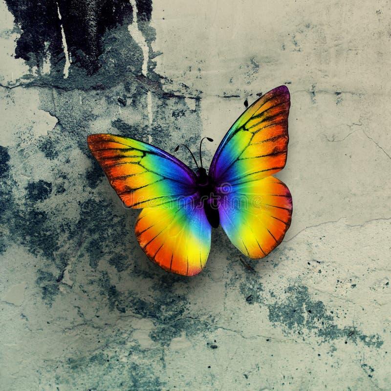 πεταλούδα ζωηρόχρωμη στοκ εικόνα