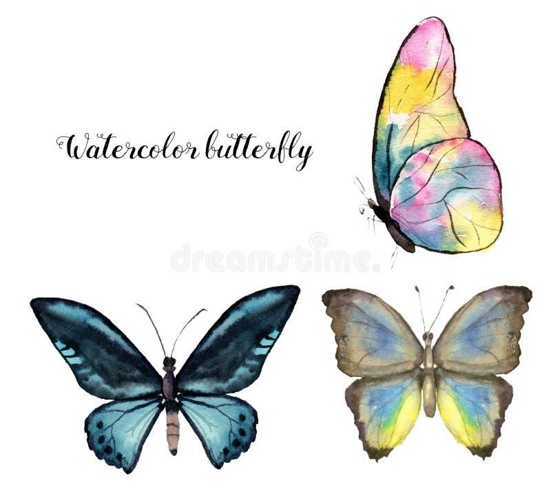Πεταλούδα Watercolor Χρωματισμένη χέρι συλλογή εντόμων που απομονώνεται στο άσπρο υπόβαθρο Απεικόνιση για το σχέδιο, τυπωμένη ύλη διανυσματική απεικόνιση