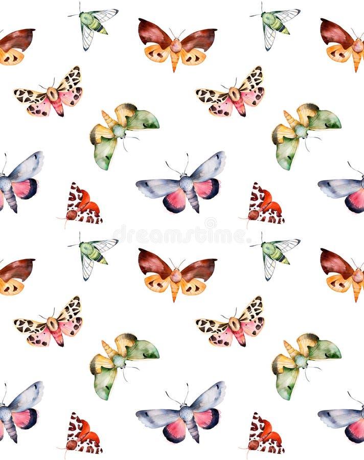 Πεταλούδες και σκώροι στην άσπρη σύσταση απεικόνιση αποθεμάτων