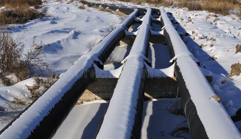Πετρελαιαγωγός στοκ φωτογραφίες