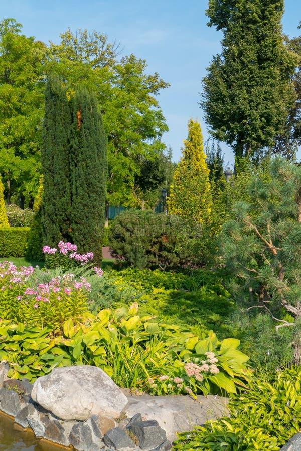 Πετρώδης με φυτών ξενιστών και τα διάφορα ρόδινα λουλούδια κάτω από τους κωνοφόρους Μπους και τα δέντρα στοκ φωτογραφία