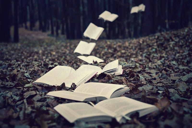 Πετώντας βιβλία στοκ φωτογραφίες με δικαίωμα ελεύθερης χρήσης