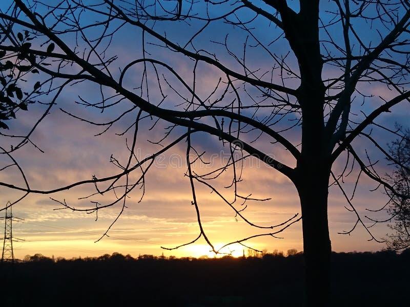 πεδίο πέρα από το ηλιοβασί&lam στοκ εικόνα