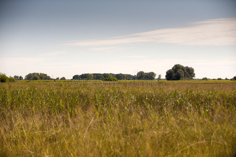 πεδίο φθινοπώρου στοκ φωτογραφίες με δικαίωμα ελεύθερης χρήσης