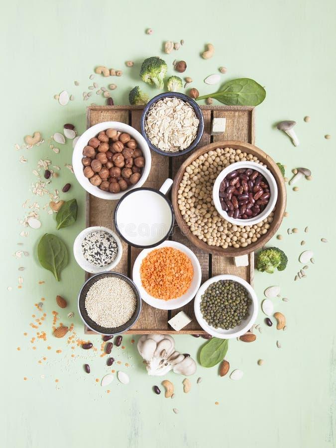 Πηγές πρωτεΐνης εγκαταστάσεων Vegan και χορτοφάγος έννοια τροφίμων r στοκ φωτογραφίες με δικαίωμα ελεύθερης χρήσης