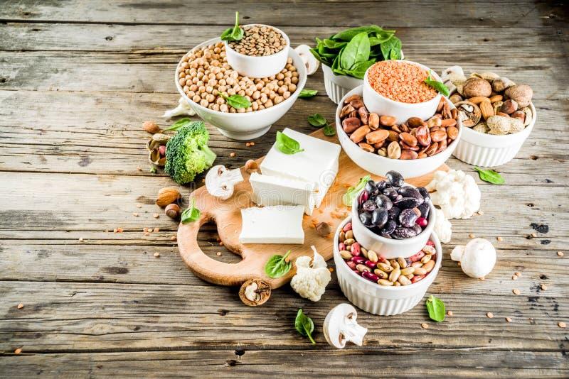 Πηγές πρωτεΐνης εγκαταστάσεων Vegan στοκ εικόνες με δικαίωμα ελεύθερης χρήσης