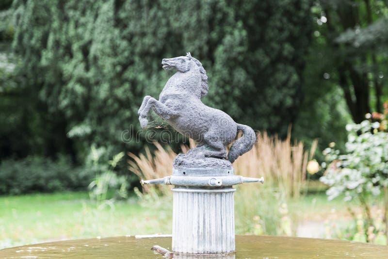Πηγή αλόγων στο πάρκο με το άλογο στοκ εικόνα