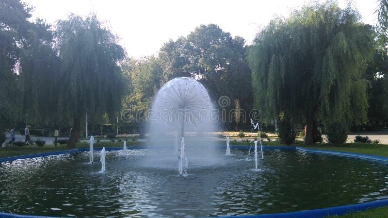 Πηγή σε ένα πάρκο στοκ φωτογραφία με δικαίωμα ελεύθερης χρήσης