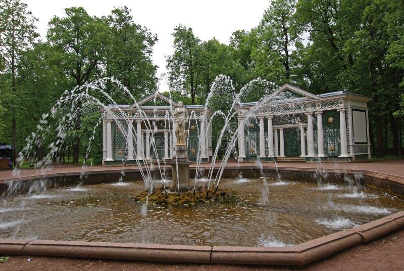 Πηγή Peterhof του Adam στοκ φωτογραφία με δικαίωμα ελεύθερης χρήσης