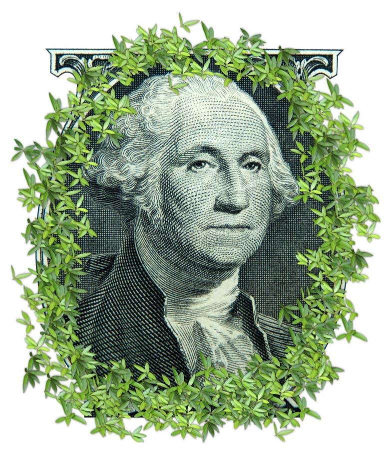πηγαίνοντας πράσινα χρήματ&alpha στοκ φωτογραφία με δικαίωμα ελεύθερης χρήσης