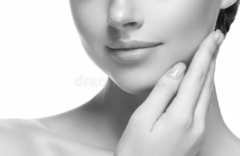 Πηγούνι και ceeks ομορφιά χειλικών καλλυντικό μονοχρωματικό λαιμών γυναικών στοκ εικόνες