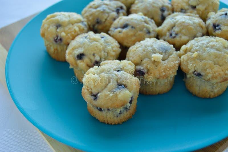 Πιάτο μίνι muffins βακκινίων στοκ εικόνα με δικαίωμα ελεύθερης χρήσης