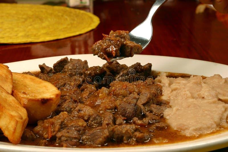 πιάτο μεξικανός στοκ εικόνες