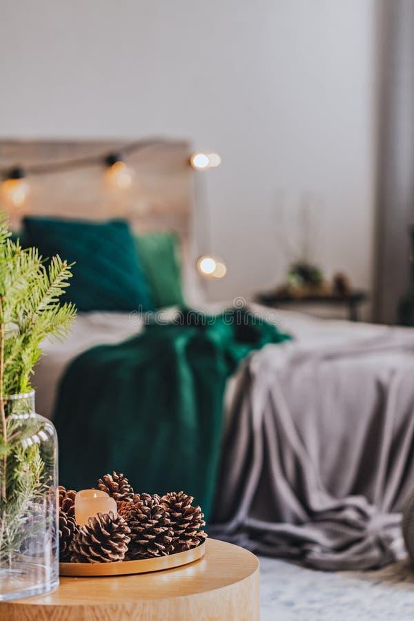 Πιάτο με κώνους και λουλούδια σε γυάλινο βάζο στο τραπέζι του καφέ στο κομψό εσωτερικό της κρεβατοκάμαρας με κρεβάτι με σμαραγδί  στοκ εικόνες