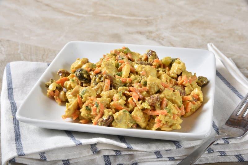 Πιάτο της ξυστρισμένης σαλάτας κοτόπουλου στοκ φωτογραφίες με δικαίωμα ελεύθερης χρήσης