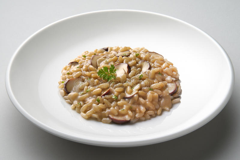 Πιάτο του risotto με τα μανιτάρια porcini στοκ φωτογραφία