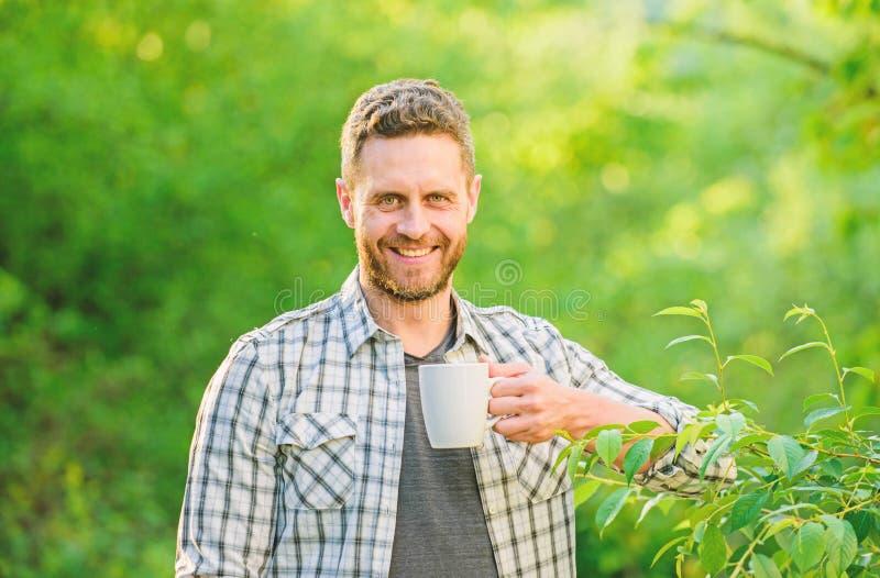 Πιείτε το τσάι υπαίθριο οικολογική ζωή για το άτομο άτομο στον πράσινο δασικό καφέ πρωινού r φύση και υγεία στοκ εικόνες