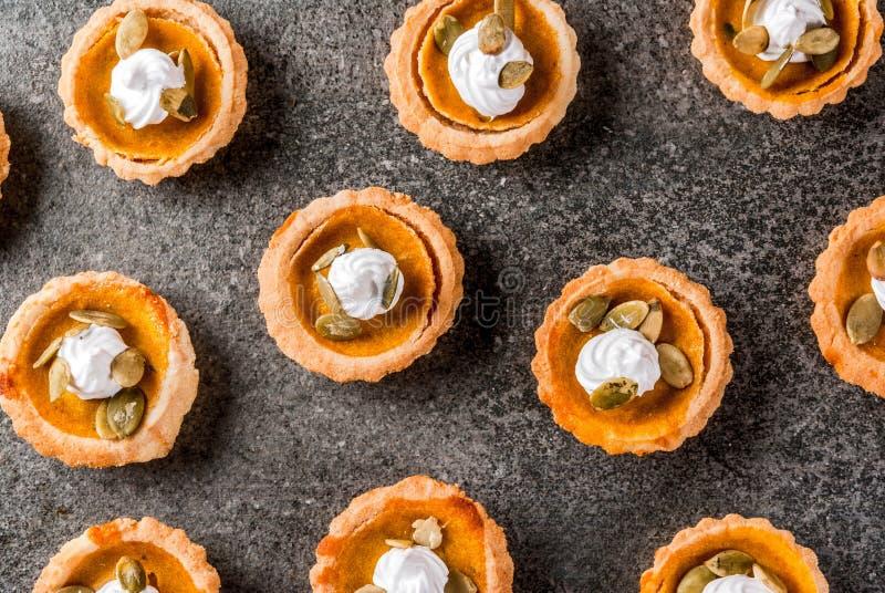 Πικάντικα tartlets κολοκύθας στοκ εικόνες με δικαίωμα ελεύθερης χρήσης