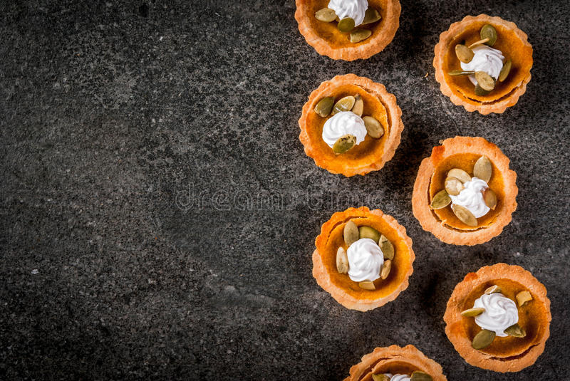 Πικάντικα tartlets κολοκύθας στοκ φωτογραφία με δικαίωμα ελεύθερης χρήσης