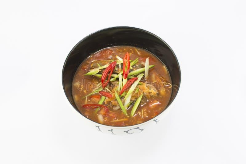 Πικάντικη κονσερβοποιημένη ψάρια σαλάτα σαρδελλών στη σάλτσα ντοματών στοκ φωτογραφία με δικαίωμα ελεύθερης χρήσης