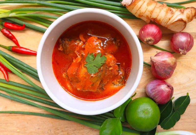 Πικάντικη κονσερβοποιημένη ψάρια σαλάτα σαρδελλών στοκ εικόνα