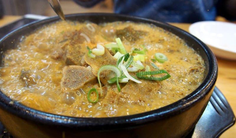 Πικάντικη chi της Kim σούπα βόειου κρέατος στοκ φωτογραφία