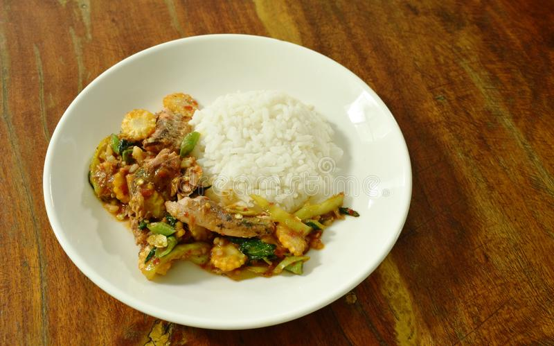 Πικάντικος ανακατώστε τα τηγανισμένα κονσερβοποιημένα ψάρια σαρδελλών με το φύλλο τσίλι και βασιλικού στο ρύζι στοκ φωτογραφίες