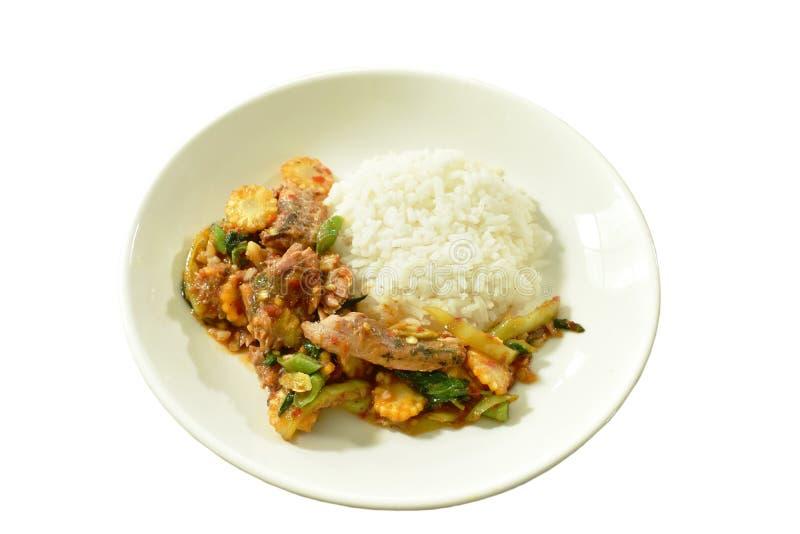 Πικάντικος ανακατώστε τα τηγανισμένα κονσερβοποιημένα ψάρια σαρδελλών με το φύλλο τσίλι και βασιλικού στο ρύζι στοκ εικόνες