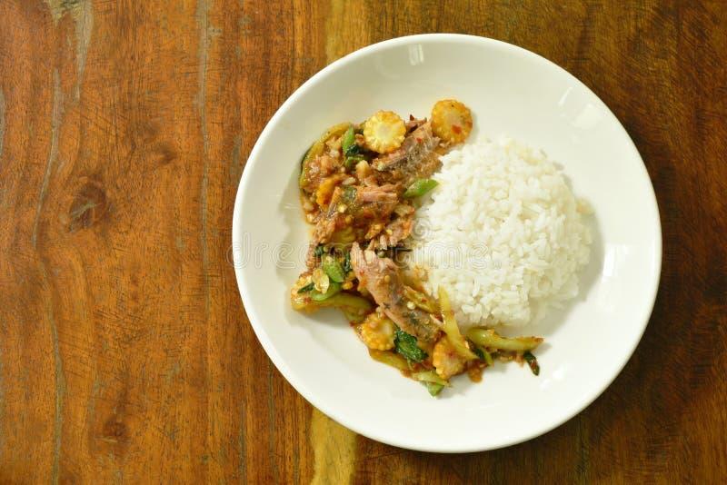 Πικάντικος ανακατώστε τα τηγανισμένα κονσερβοποιημένα ψάρια σαρδελλών με το φύλλο τσίλι και βασιλικού στο ρύζι στοκ εικόνες με δικαίωμα ελεύθερης χρήσης