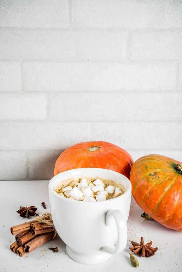 Πικάντικος καφές κολοκύθας latte στοκ φωτογραφία