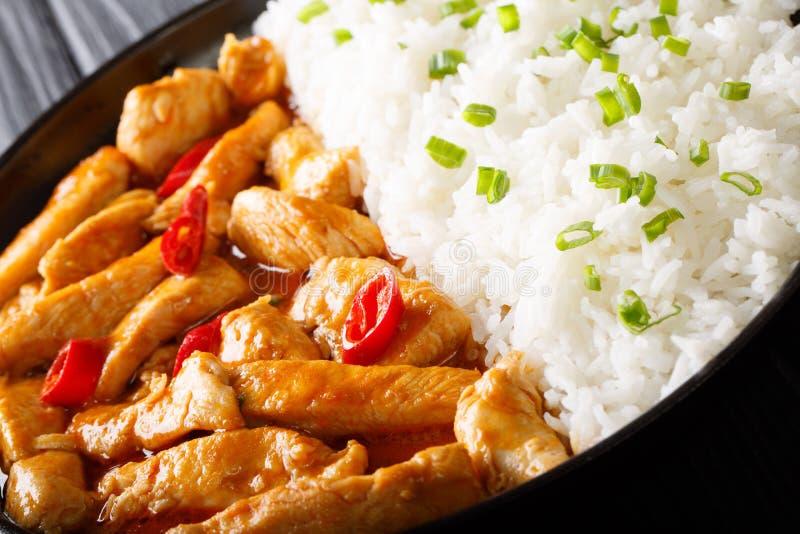 Πικάντικο σπιτικό κάρρυ κοτόπουλου panang με το ρύζι και το πράσινο CL κρεμμυδιών στοκ φωτογραφίες με δικαίωμα ελεύθερης χρήσης