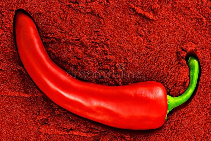 πικάντικο tandoori στοκ φωτογραφίες