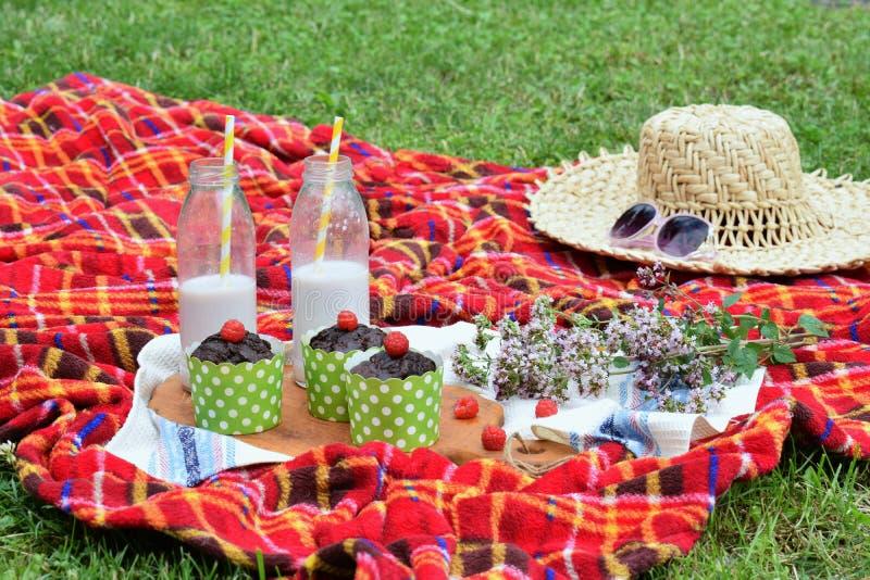 Πικ-νίκ καλοκαιριού που θέτει στην πράσινη χλόη με muffins σοκολάτας και milkshake στοκ εικόνες