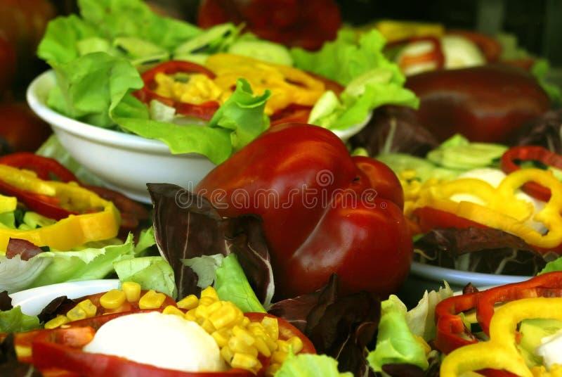 πιπέρια γευμάτων στοκ εικόνα
