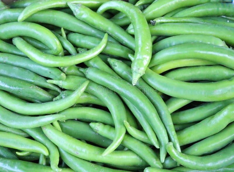 Πιπέρια του Cayenne στοκ φωτογραφία