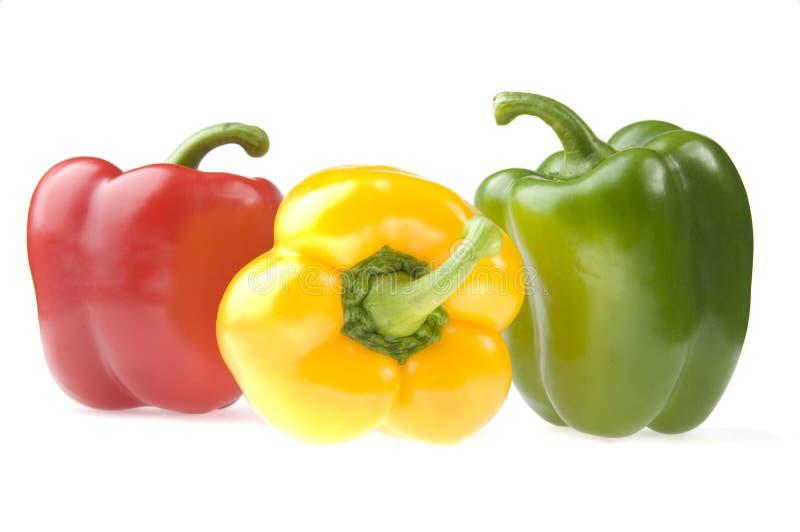 πιπέρια τρία στοκ εικόνα