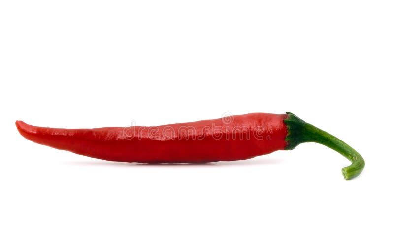 πιπέρι αιχμηρό στοκ φωτογραφία με δικαίωμα ελεύθερης χρήσης