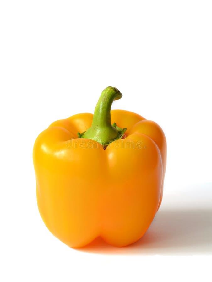 πιπέρι κουδουνιών κίτρινο στοκ εικόνες