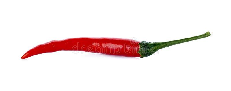 Πιπέρι τσίλι στοκ φωτογραφία με δικαίωμα ελεύθερης χρήσης