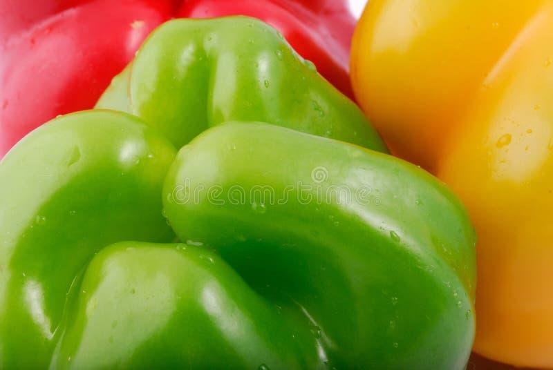 Download πιπέρι στοκ εικόνες. εικόνα από καυτός, συστατικό, πιπέρι - 13180856