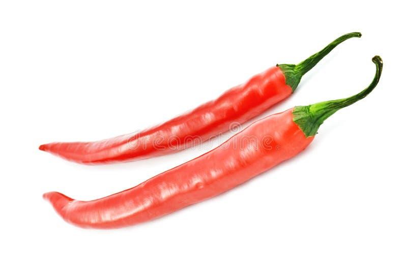 Download πιπέρι στοκ εικόνα. εικόνα από τσίλι, κόκκινος, μεξικάνικα - 13187097