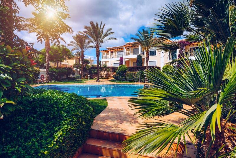 Πισίνα, ήλιος-αργόσχολοι και φοίνικες κατά τη διάρκεια μιας θερμής ηλιόλουστης ημέρας, προορισμός παραδείσου για τις διακοπές Πισ στοκ εικόνες